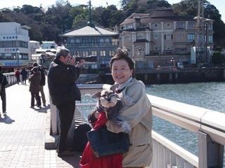 江の島大橋.jpg